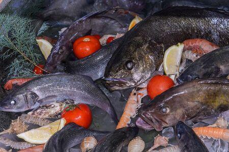 Fresh seafood fish, shrimp, lemons, tomatoes in ice