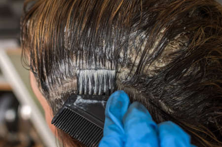 Master hairdresser dyes hair with hair dye