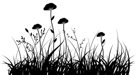 herb garden: black silhouette of a grass and flowers on a white background