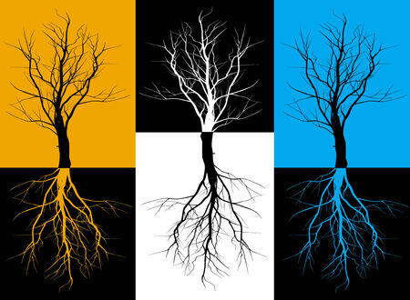 Three silhouettes of trees with roots