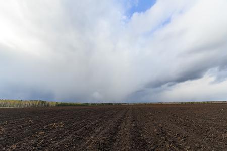 耕地クローズ アップ上の雲