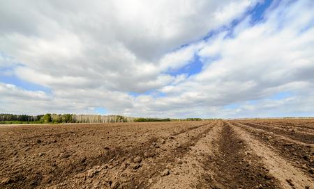 Plowed field after planting potatoes Standard-Bild