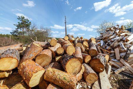 Heap of round pine logs Stockfoto