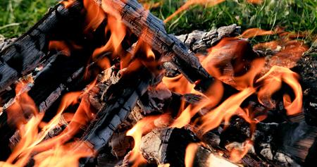 Bonfire close-up. Evening Stockfoto