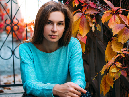Portrait of a young beautiful woman. The girl on the background of golden autumn, calm and beautiful. Standard-Bild - 113380218