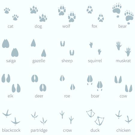 Vector Set of Animals Footprint  in the Snow 일러스트