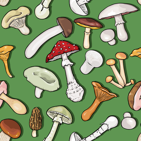 morel: Vector Seamless Pattern Background of Sketch Mushrooms