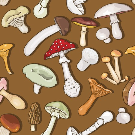 cep: Vector Seamless Pattern Background of Sketch Mushrooms