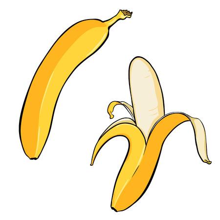 Vector Cartoon Illustration: Two Isolated Yellow Bananas.