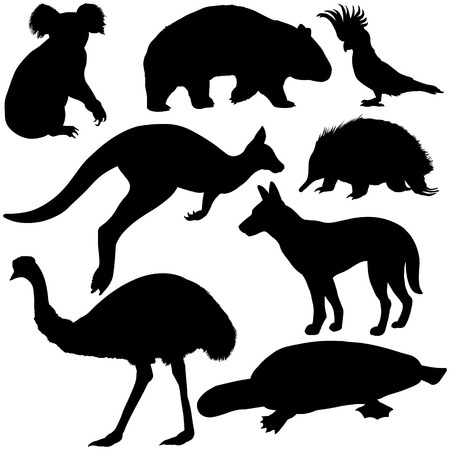 australian animals: vector set of black australian animals silhouettes Illustration