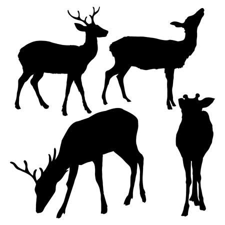 Vector Set of Black Dappled Deer Silhouetttes