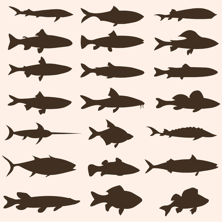 brown trout: vector set of fish silhouettes