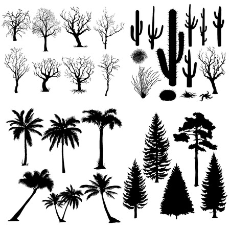 Vector Big Set of Trees and Plants Silhouettes. Cacti, Tumbleweed, Pine Tree, Palm Tree, Bare Tree.