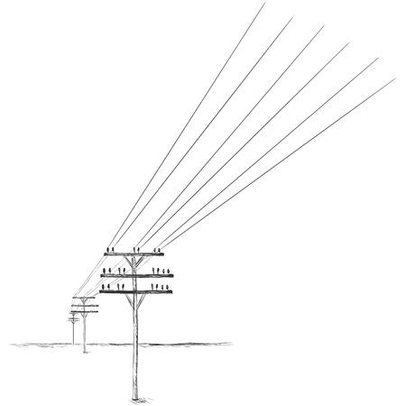 telephone pole: Vector Sketch Power Line