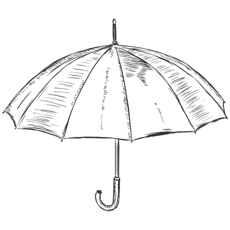 umbel: vector sketch illustration - open umbrella Illustration