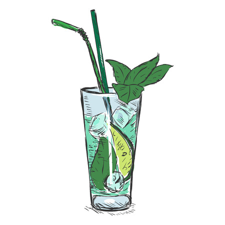 Vector Color Sketch Cocktail Mojito with Mint Leaves and Straws