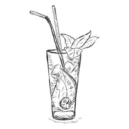 Vector Sketch Cocktail Mojito with Mint Leaves and Straws on White Background