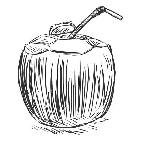 potable: Vector Coconut Cocktail with a Straw on White Background Illustration