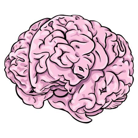 thalamus: Vector cartoon pink brain on White Background