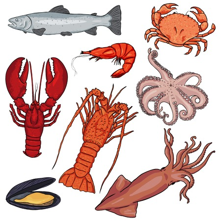 Vector Set of Cartoon Sea Food on White Background Иллюстрация