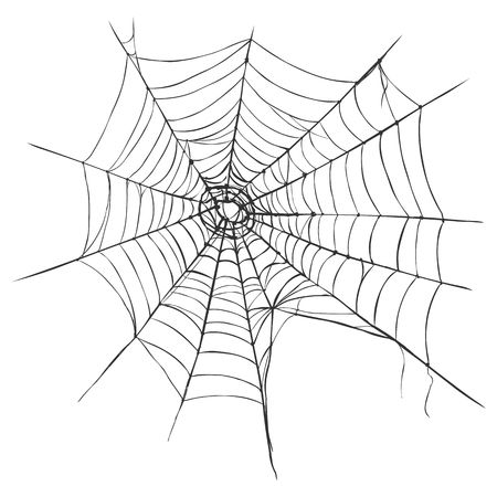 spiders web: Vector Black Spiders Web on White Background