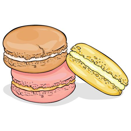 Vector Cartoon Color Macarons on White Background Illustration