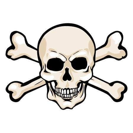 freebooter: Vector Single Cartoon Pirate Skull with Cross Bones Illustration