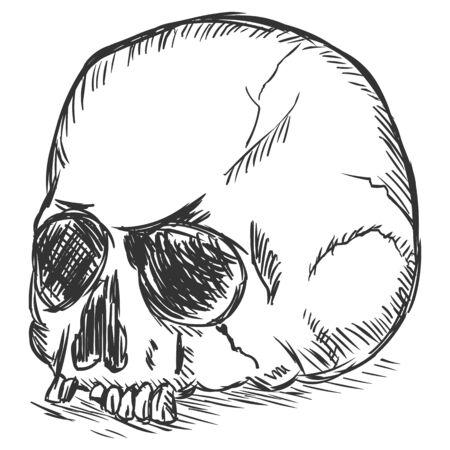 necromancy: vector sketch illustration - old stale skull on White Background Illustration