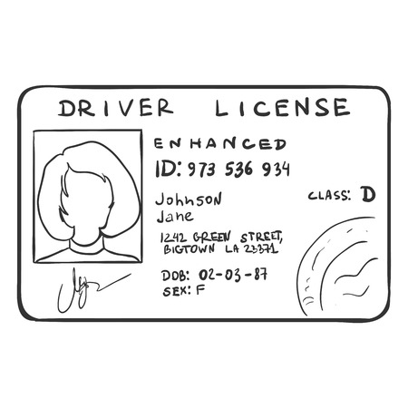 drivers: Vector Single Sketch Drivers Licence on White Background Illustration