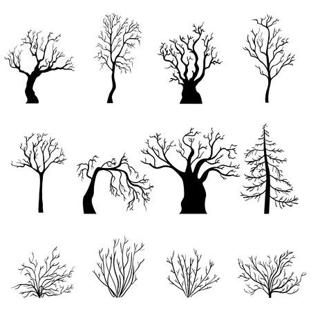 Vector Set von schwarzen Silhouetten von Bare Bäume und Büsche ohne Blätter Vektorgrafik