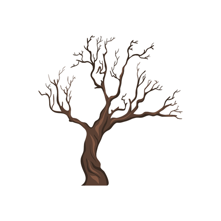 Vector Single Cartoon Brown Bare Tree on White Background