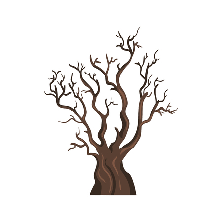 large tree: Vector Single Cartoon Brown Bare Tree on White Background