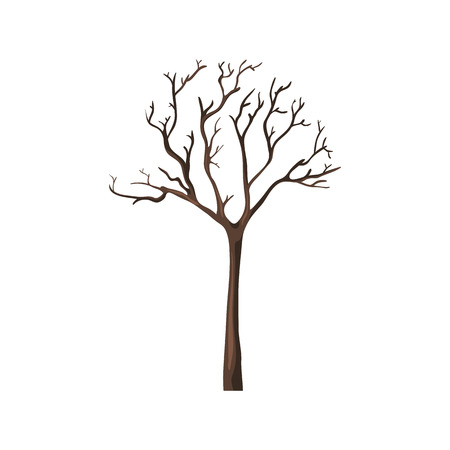 bareness: Vector Single Cartoon Brown Bare Tree on White Background