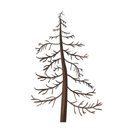 Vector Single Cartoon Brown Bare Pine Tree on White Background Illustration