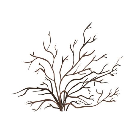 Vector Single Bare Brown Bush on White Background Illustration