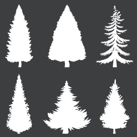 Vector Set of White Silhouettes of Pine Trees on Black Background Ilustração