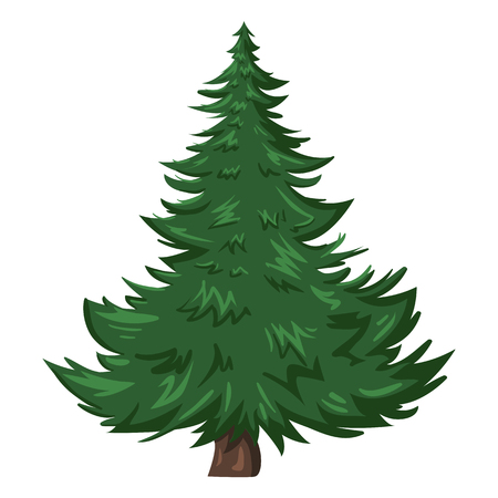 Vector Single Isolated Cartoon Pine Tree on White Background Illustration