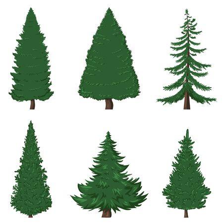 Vector Set of 6 Cartoon Pine Trees on White Background Vettoriali