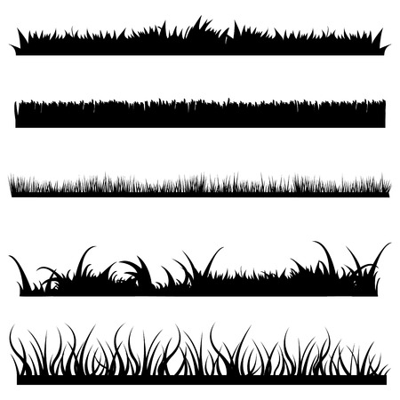 Vector Set of Black Grass Silhouettes on White Backround Illustration