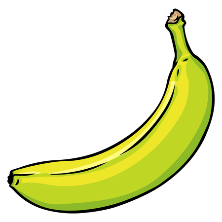 Vector Cartoon Green Unripe Banana on Isolated White Background Illustration