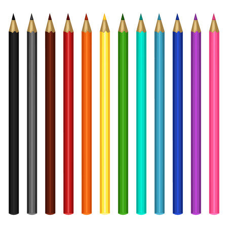 Vector Set of Multicolor Pencils on White Background