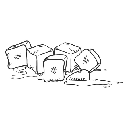 Vector Black Sketch Illustration - Ice Cubes Melting 矢量图像