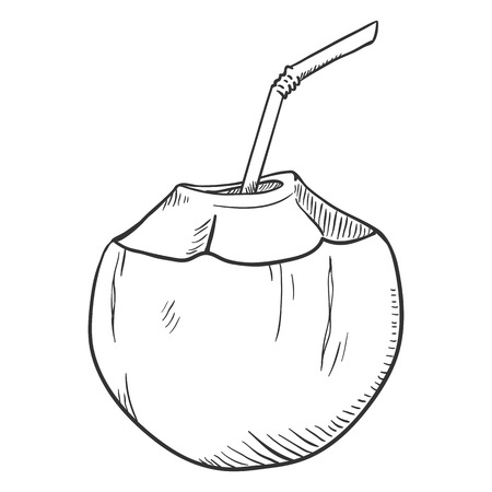 Vector Sketch Illustration - Coconut Cocktail with Drinking Straw Illusztráció