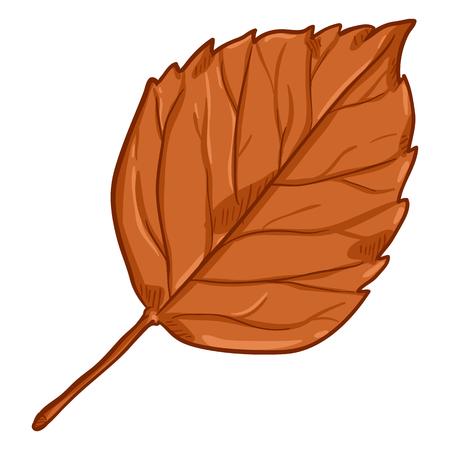 Vector Cartoon Illustration - Autumn Fallen Orange Leaf of Birch 일러스트