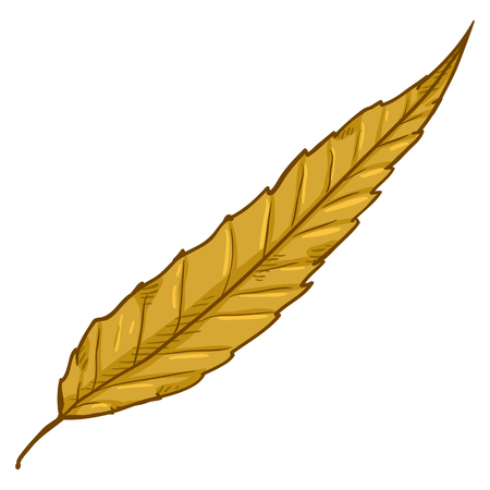 Vector Cartoon Illustration - Autumn Fallen Yellow Leaf of Crack Willow Foto de archivo - 114706021