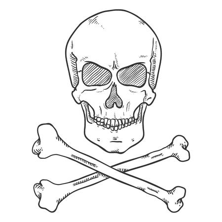 Vector Sketch Pirate Symbol - Human Skull with Cross Bones