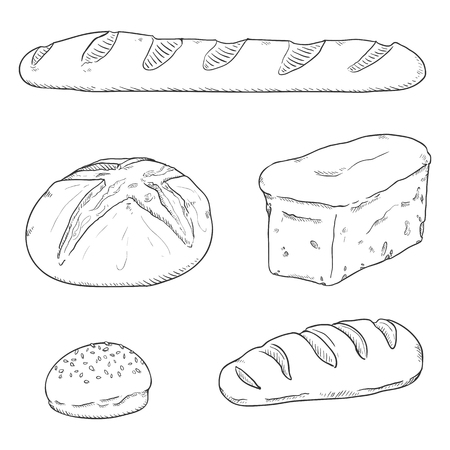 Vector Black Sketch Set of Fresh Baked Bread Loaves and Baguettes
