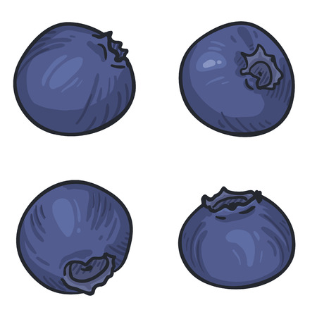 Vector Set of Cartoon Blueberry