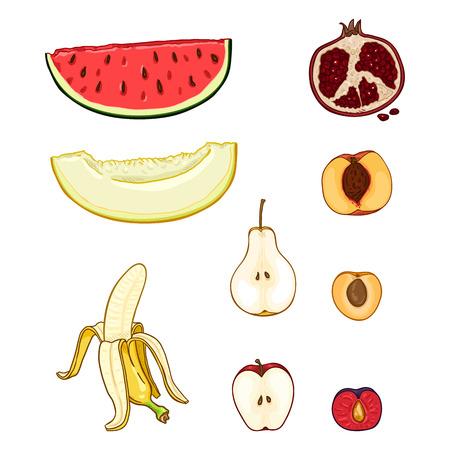 Vector Set of Cartoon Fruit Pieces. Melon, Watermelon, Pear, Banana and Apple, Plum, Pomegranate, Apricot, Peach Illustration