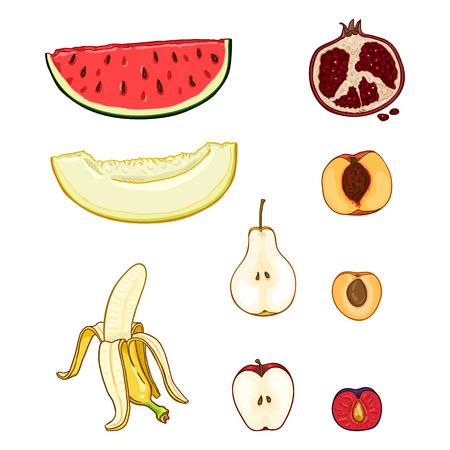 Vector Set of Cartoon Fruit Pieces. Melon, Watermelon, Pear, Banana and Apple, Plum, Pomegranate, Apricot, Peach Ilustração